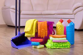 Motives to rent an expert cleanser