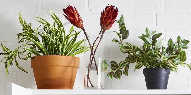 5 Realistic Artificial Plants in Singapore